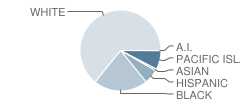 Lonoke High School Student Race Distribution