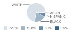 Lonoke Middle School Student Race Distribution