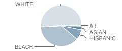Landmark Elementary School Student Race Distribution