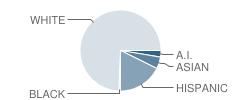 Concho Elementary School Student Race Distribution