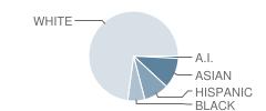 Zuni Elementary School Student Race Distribution