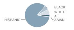 Los Ninos Elementary School Student Race Distribution