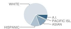 Ruhkala Elementary School Student Race Distribution