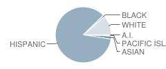 El Camino High (Continuation) School Student Race Distribution