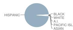 Euclid Elementary School Student Race Distribution