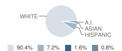 Stellar Charter School Student Race Distribution