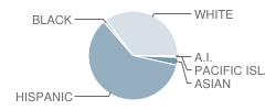 San Benito High School Student Race Distribution