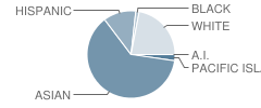 Mills High School Student Race Distribution