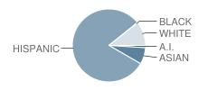 Indianola Elementary School Student Race Distribution
