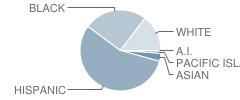 Silverado High School Student Race Distribution