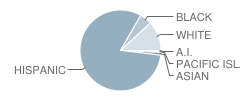 Pleasant Elementary School Student Race Distribution