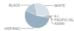 Kohler Elementary School Student Race Distribution