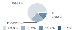 Clovis Online Charter School Student Race Distribution