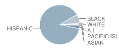 Fenton Primary Center School Student Race Distribution