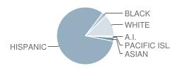 Machado Elementary School Student Race Distribution