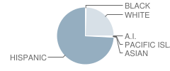 Healdsburg Elementary School Student Race Distribution