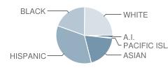 Muir (John) Elementary School Student Race Distribution