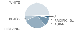 Mcmanus (John A.) Elementary School Student Race Distribution
