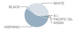 Fairmead Elementary School Student Race Distribution