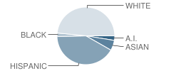 Enterprise Alternative School Student Race Distribution
