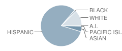 Gallatin Elementary School Student Race Distribution