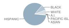 Birch High (Continuation) School Student Race Distribution