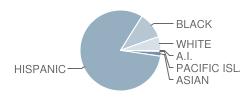 Almeria Middle School Student Race Distribution