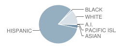 Imperial Middle School Student Race Distribution