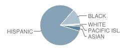 International Elementary School Student Race Distribution