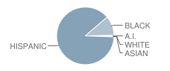 Accelerated School Student Race Distribution