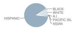 Tuolumne Elementary School Student Race Distribution
