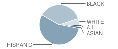 Contemporary Learning Academy High School Student Race Distribution