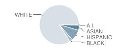 Sierra Middle School Student Race Distribution