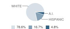 Psd Online Academy Student Race Distribution