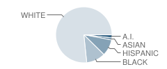 Mary Morrisson School Student Race Distribution