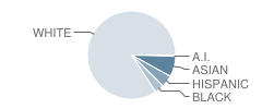 Oswegatchie Elementary School Student Race Distribution