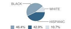 The University School Student Race Distribution