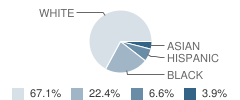 Developmental Learning Center (Dlc) School Student Race Distribution