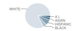 Pearson Academy Student Race Distribution