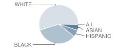 Redding (Louis L.) Middle School Student Race Distribution