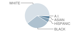 Postlethwait (F. Niel) Middle School Student Race Distribution