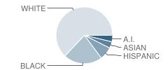 Bush (Charles W.) School Student Race Distribution