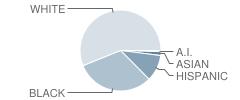 Wheatley (Phillis) Middle School Student Race Distribution