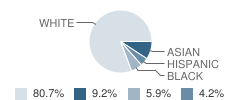 Gulf Coast Academy of Science and Technology Student Race Distribution