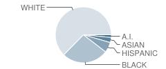 Alternative Education / Ubc School Student Race Distribution