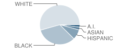 Mayport Elementary School Student Race Distribution