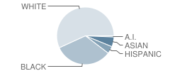 Escambia High School Student Race Distribution