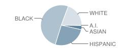 Ippolito Elementary School Student Race Distribution