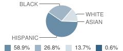 Samoset Elementary School Student Race Distribution