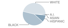 Rochelle School of the Arts Student Race Distribution